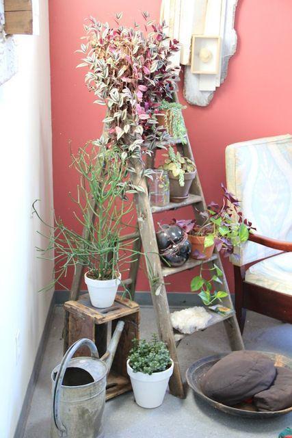 старая стремянка на балконе -лайфхаки для балкона